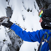 Tyler Hatcher hands a seed cone off to a gray jay in the Washington Cascades.