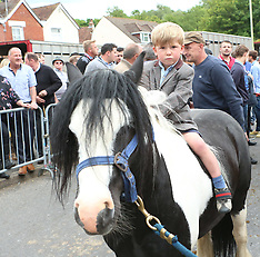 Wickham Horse Fair 2017