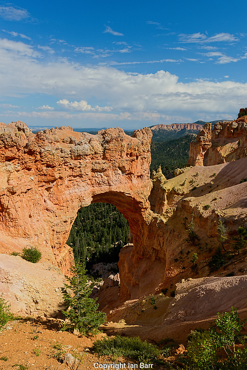 Natural Bridge, elevation 8627, Bryce Canyon National Park.