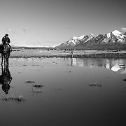 A guacho and his dog in a water reflection near Torres del Paine National Park, Chile.
