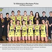 Team Pulse