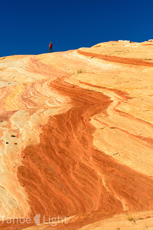 A hiker atop one of the colorful petrified sand dunes create the unique landscape of Valley of Fire state park in Southern Nevada about 2 hours outside of Las Vegas.