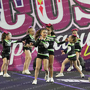 1049_Intensity Cheer and Dance - SHIMMER