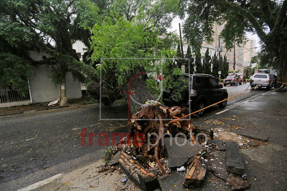 Uma árvore de grande porte caiu após um curto circuito na fiação, na rua Cubatão, bairro da Vila Mariana, durante a chuva que atingiu a cidade de São Paulo nesta madrugada. A via se encontrava completamente interditada por volta das 8 horas da manhã. Foto: Nelson Antoine/FramePhoto