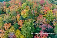 64776-02113 Aerial view of Hugoboom Lake in fall color Alger Co. MI