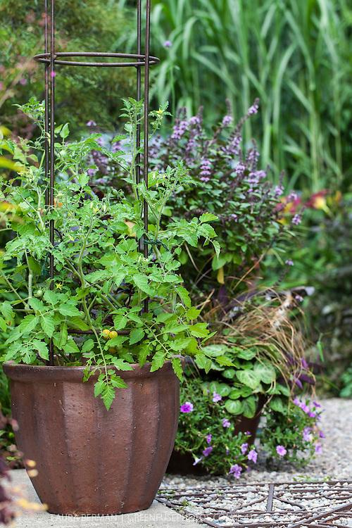 A mixed edible and ornamental garden.