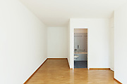 interior of an apartment, empty room with bathroom, parquet floor