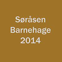 2014_Søråsen_BHG
