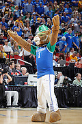 Kentucky Wildcats mascot is dress for St. Patrick's Day as he takes the floor during the game against the Iowa State Cyclones during the third round of the NCAA men's basketball championship on March 17, 2012 at KFC Yum! Center in Louisville, Kentucky. Kentucky advanced with an 87-71 win. (Photo by Joe Robbins)