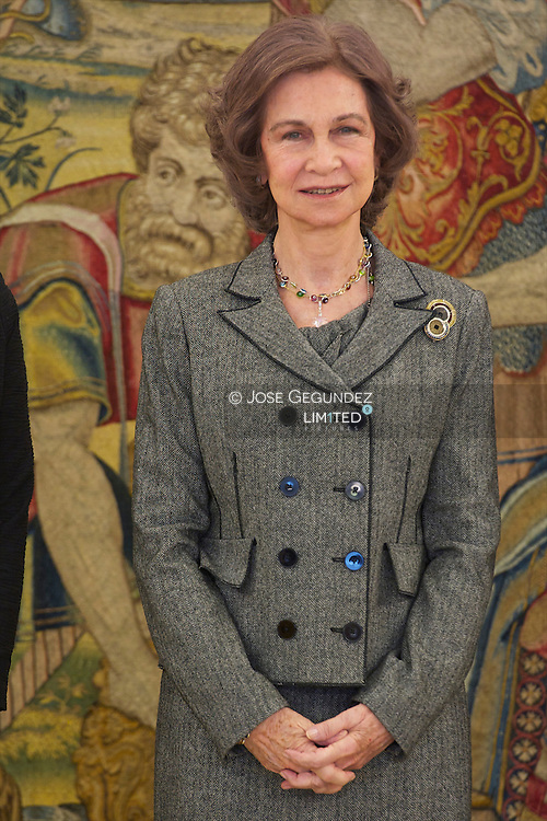Queen Sofia attends an Audience with Teofila Martinez, Major of Cadiz, at Zarzuela Palace in Madrid