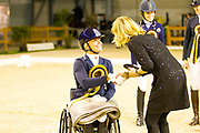 Nicole den Dulk - Wallace N.O.P.<br /> Indoor Brabant 2017<br /> © DigiShots - Jessica van Herk