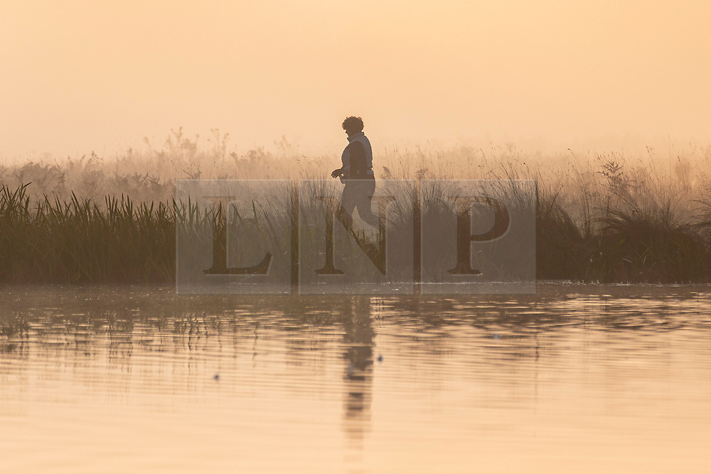 © Licensed to London News Pictures. 10/10/2018. London, UK. A jogger at sunrise in Bushy Park, south London. Forecasters are expecting unusually warm temperatures for October. Photo credit: Rob Pinney/LNP