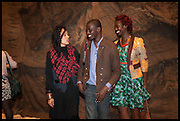 KIOKA WILLIAMS; IBRAHIM MAHAMA; CRISSA AMUAH; , Pangaea, New Art from Africa and Latin America. Saatchi Gallery. Duke of York's HQ. King's Rd. London. 1 April 2014.