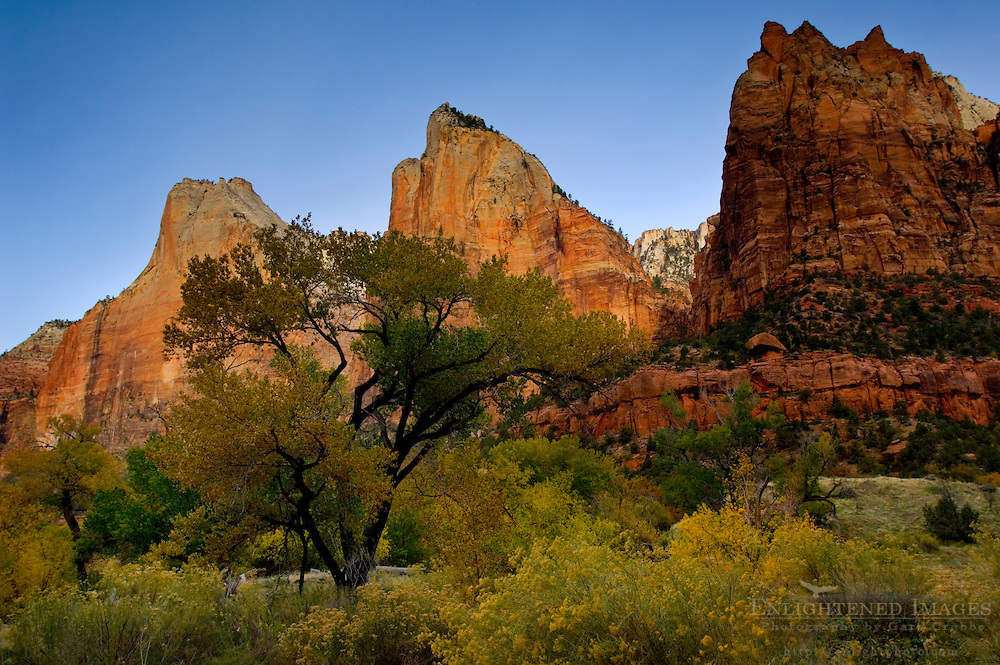 Morning light on The Court of the Patriarchs, Zion Canyon, Zion National Park, Utah