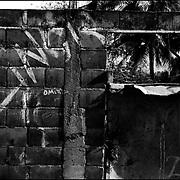 MISCELÁNEAS<br /> Photography by Aaron Sosa<br /> Clarines, Estado Anzoategui - Venezuela 2001<br /> (Copyright © Aaron Sosa)