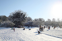 Tobogganing on Killiney Hill Dublin in the snow November 2010