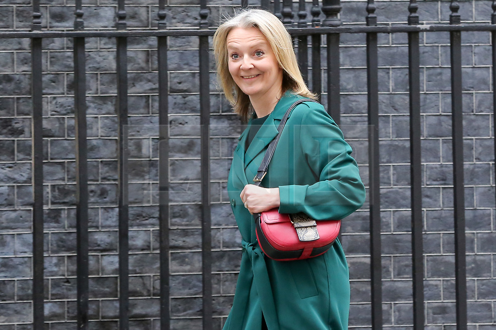 © Licensed to London News Pictures. 18/12/2018. London, UK. Liz Truss - Chief Secretary to the Treasury returns back to No 10 Downing Street. Photo credit: Dinendra Haria/LNP