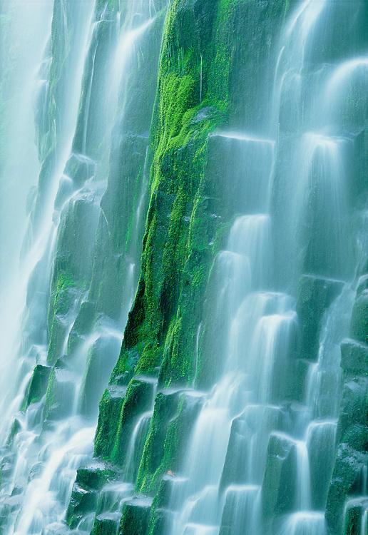 Lower Proxy Falls, Three Sisters Wilderness, Cascade Mountains, Oregon.