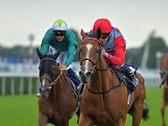 Pleasant Surprise ridden by Jamie Spencer (Red cap and sleeves light blue top) during the Racing Welfare Charity Raceday meeting at Doncaster Racecourse, Doncaster<br /> Picture by Martin Lynch/Focus Images Ltd 07501333150<br /> 07/07/2017