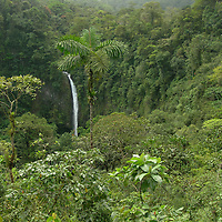 EN&gt; A waterfall drops in the middle of the jungle in Costa Rica | <br /> SP&gt; Una cascada en la jungla costarricense