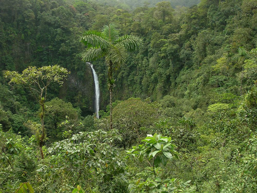 EN&gt; A waterfall drops in the middle of the jungle in Costa Rica | <br /> SP&gt; Una cascada en la jungla costarricense