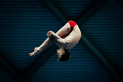 Owen Harrison from City of Sheffield Diving Club competes in the Mens 10m Platform Preliminary - Mandatory byline: Rogan Thomson/JMP - 12/06/2016 - DIVING - Ponds Forge - Sheffield, England - British Diving Championships 2016 Day 3.
