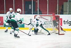 US Zan during Alps League Ice Hockey match between HK SZ Olimpija and HDD SIJ Jesenice, on February 12, 2019 in Ice Arena Podmezakla, Jesenice, Slovenia. Photo by Peter Podobnik / Sportida