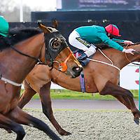 Starlight Princess and J P Fahy winning the 1.45 race