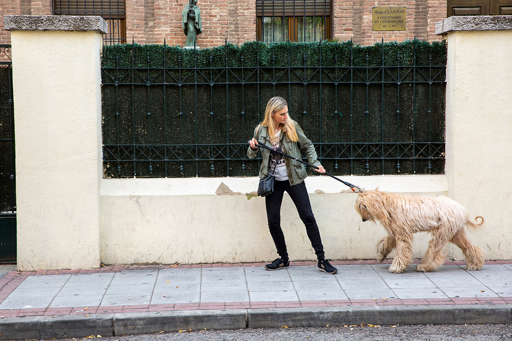 A woman with long blond hair struggles to take her blond haired Afghan hound out for a walk on the 30th of October 2019 on Calle Clarisas, in the Opanal area of Madrid, Spain.  (photo by Andrew Aitchison / In pictures via Getty Images)