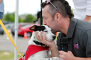 Joey, a six-month-old jack russell mix from SICSA and looking for a forever home, gets a kiss from Shaun Vincent of Mix 107.7 during the Humane Society of Greater Dayton's Furry Skurry at Miami Valley Hospital South in Centerville, Saturday, May 12, 2012. Joey is descibed as ' every one's best friend, would love to have someone to hang out with, and loves to play all day.'