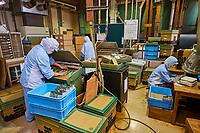 Japon, île de Honshu, région de Shizuoka, usine de thé // Japan, Honshu, Shizuoka, tea factory