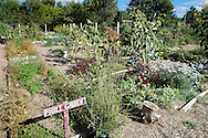 Troy Gardens in Madison, Wisconsin. Family Garden in Waushara County, Wisconsin.