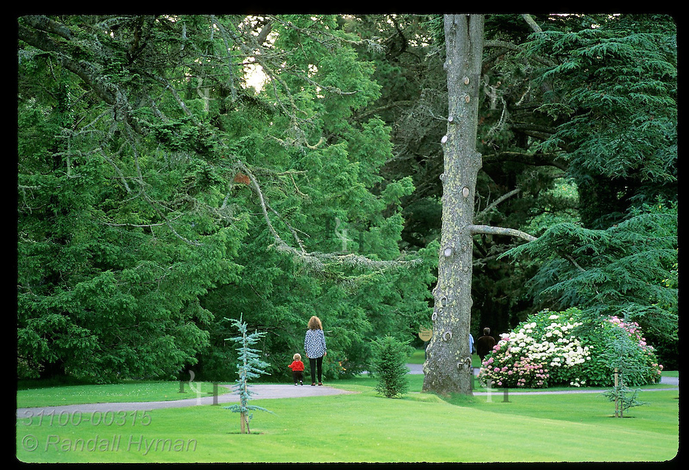Mother and toddler walk path at 350-acre Ashford Castle estate framed by trees and greens; Cong, Ireland.