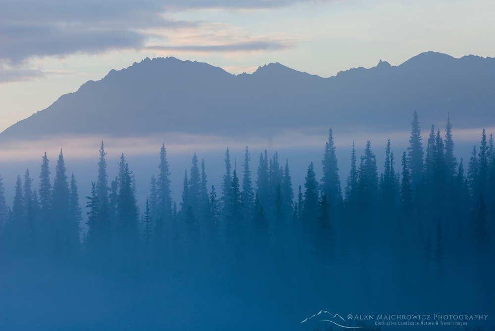 Morning fog at Broad Pass Alaska