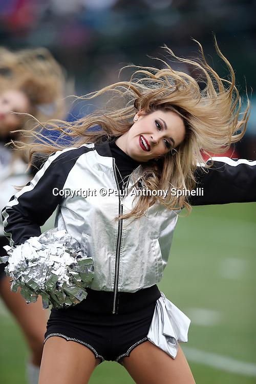 An Oakland Raiders cheerleader flips her hair and waves her pom poms as she does a dance routine during the 2015 week 15 regular season NFL football game against the Green Bay Packers on Sunday, Dec. 20, 2015 in Oakland, Calif. The Packers won the game 30-20. (©Paul Anthony Spinelli)