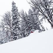 Kim Havell skis blower storm powder in the backcountry of the Tetons near Jackson Hole Mountain Resort, Teton Village, Wyoming.