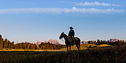 Morning Silhouette of a Cowboy against the backdrop of the Grand Teton mountain range in Jackson Hole, WY