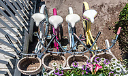 View from above four bicycles lined up with white seats and baskets. Colorful women's bikes parked outside Hungry Town Tours in Beaufort.