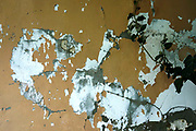 Paint peels of a wall