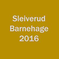 2016_Sleiverud
