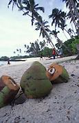 Return to Paradise Beach, Upolu, Samoa<br />