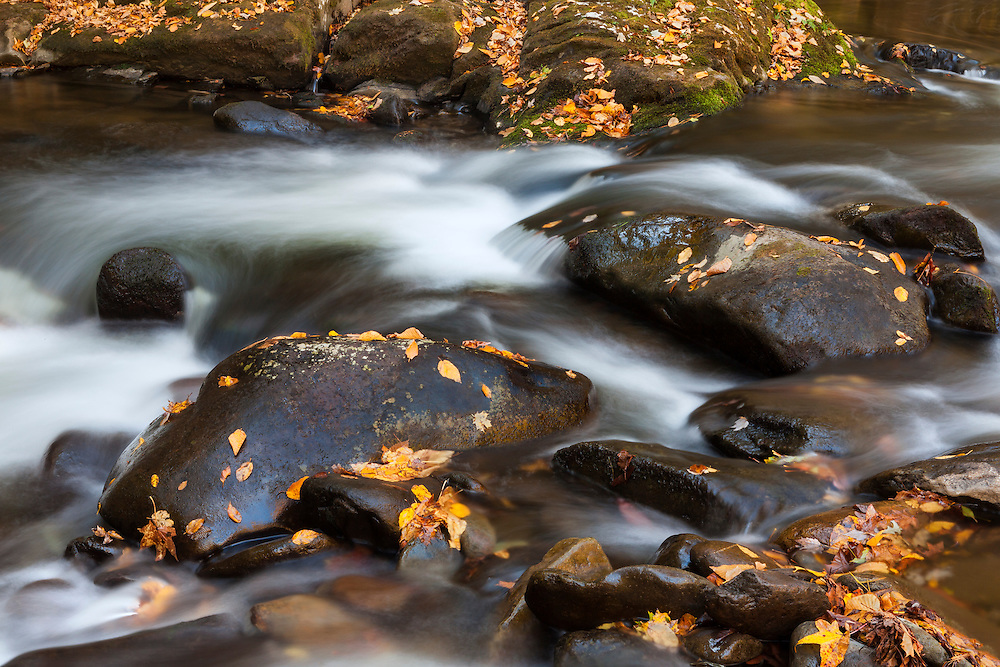 Lower Tremont Creek Cascade Rocks - Great Smoky Mountains - Fall Color
