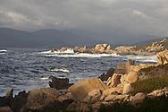 the coast from campomoro to Senetoza  Corsica south  France    /  la cote de Campomoro a senetose  Corse du sud  France   L0055828