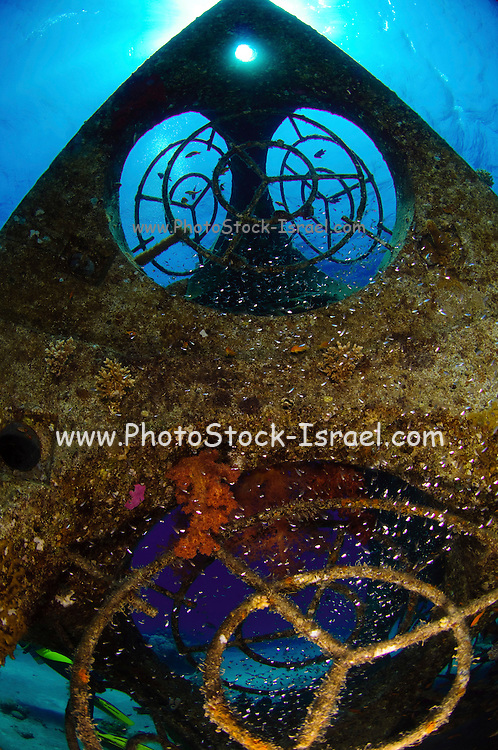 Israel, Eilat, Red Sea, - Underwater photograph of the Tamar Reef an artificial structure aimed at aiding the development of a coral reef