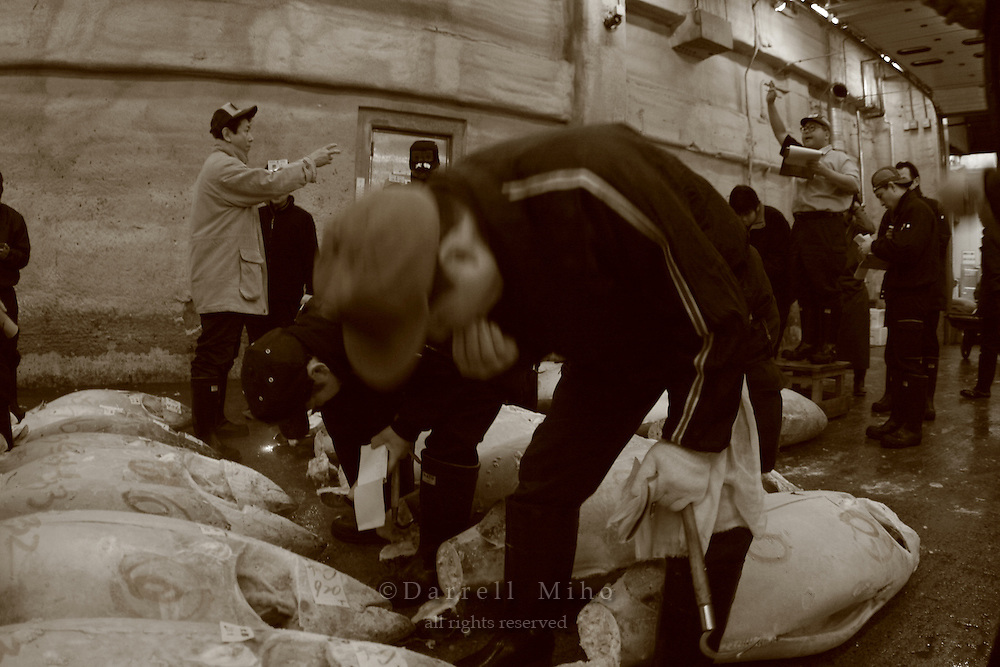 Mar 4, 2006; Tokyo, JPN; Tsukiji.A buyer checks the flavor of a frozen tuna at the Tsukiji Fish Market...After tuna is caught, it is flash frozen at sea to keep it fresh until it is brought to the market to be sold...Photo credit: Darrell Miho