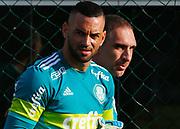 30.04.2018 - SÃO PAULO, SP -  O goleiro Fernando Prass e Weverton durante o treino do Palmeiras no CT da Barra Funda na zona oeste de São Paulo na tarde desta segunda-feira 30 ( Foto: MARCELO D.SANTS / FRAMEPHOTO )