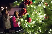 Bridget Morgan, 10, left, and Samantha Wong, 10, admire the Milpitas Christmas Tree during the Milpitas Christmas Tree Lighting Ceremony at Milpitas City Hall, in Milpitas, California, on December 1, 2013. (Stan Olszewski/SOSKIphoto)