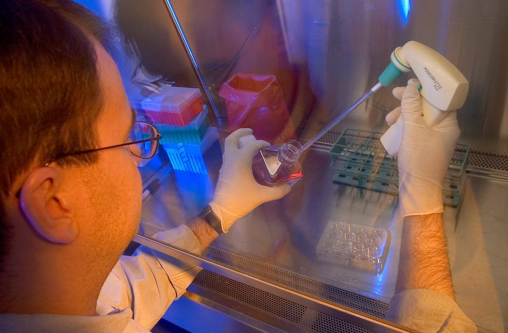 16871EB Labs Dr. Kohn/Dr. Wu /Kelly McCall