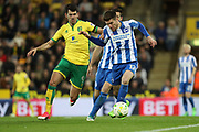 Brighton & Hove Albion defender Sebastien Pocognoli (12) and Norwich City striker Nelson Oliveira (9) during the EFL Sky Bet Championship match between Norwich City and Brighton and Hove Albion at Carrow Road, Norwich, England on 21 April 2017.