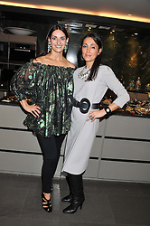 Left to right, CARMEN HAID and ELLI NOROLOZIAN at a private sales evening for Atelier Mayer held at 18 Horbury Crescent, London W11 on 22nd November 2011.